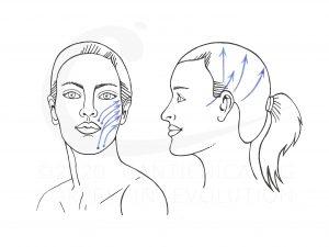 CANTIENICA®-Faceforming